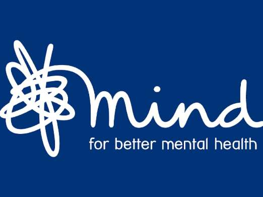 Image result for mind charity logo